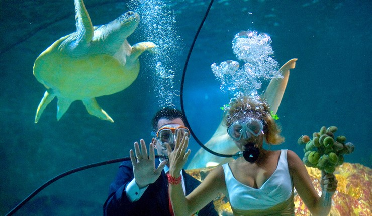 20 тысяч лье под водой