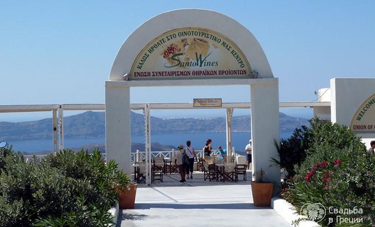 Domain of Santo Wines