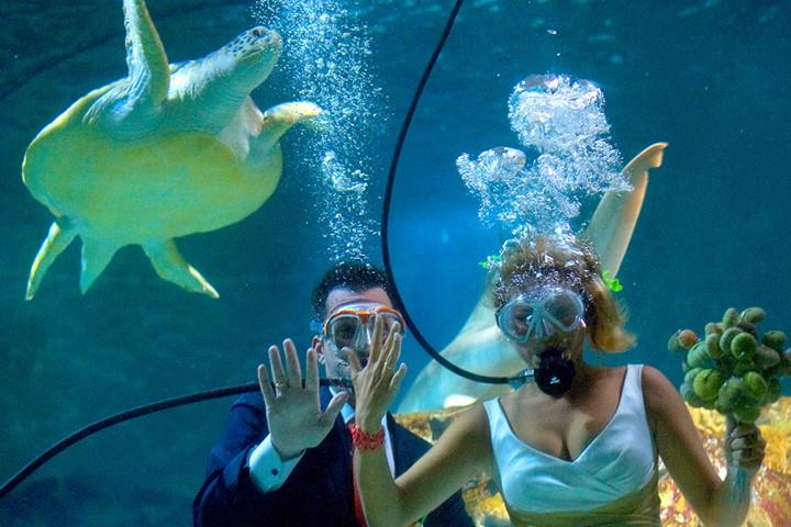 20 тысяч лье под водой, Крит