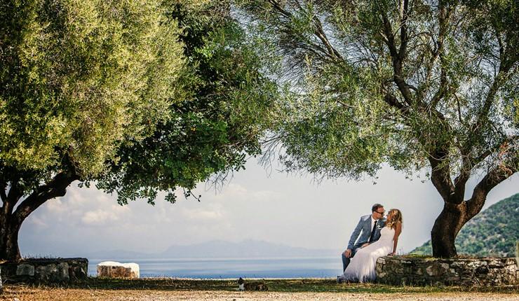 В тени греческой оливы в Афинах